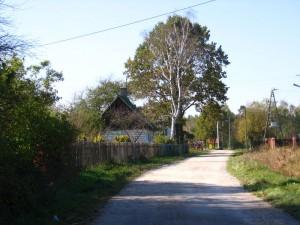 Fragment zabudowy Zagórcza [2010 r.]. Foto W. Cichecki.