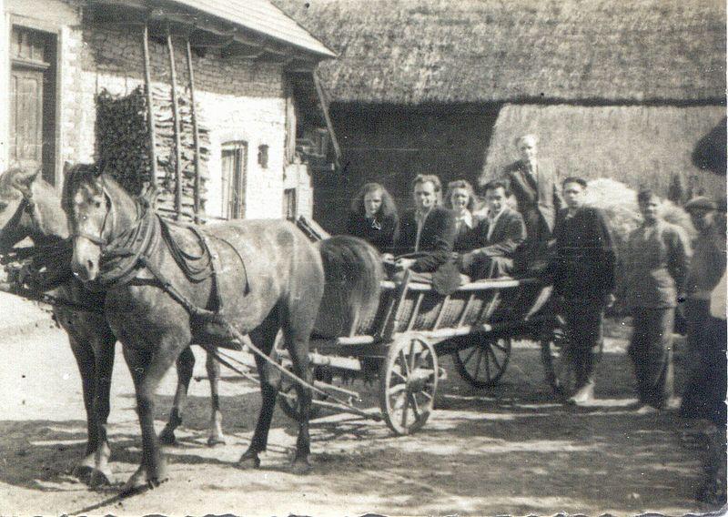 Wóz drabiniasty - podstawowy środek lokomocji ludności wiejskiej w okresie międzywojennym. Apa.