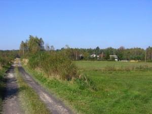 Fragment zabudowy Małego Ludwinowa [2010 r.]. Foto W. Cichecki.