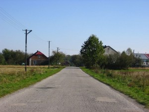 Fragment zabudowy Krzepina [2010 r.]. Foto W. Cichecki.