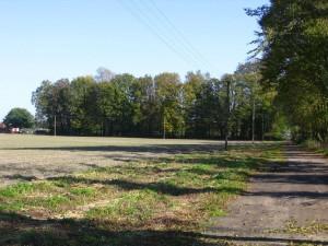 Widok na pozostałości paru dworskiego w Krzepinie [2010 r.]. Foto W. Cichecki.