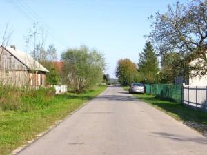 Skociszewy - fragment zabudowy [2010 r.]. Foto W. Cichecki.