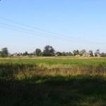 Teren na którym najprawdopodobniej znajdował się dwór w Krasowie. Widok od strony południowej [2010 r.]. Foto W. Cichecki.