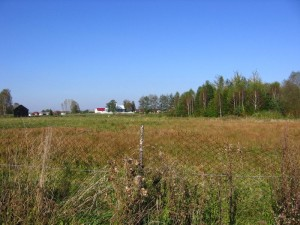Teren dawnego stawu znajdującego się pomiędzy Zastawiem, a Górną Wsią [2010r.]. Foto W. Cichecki.