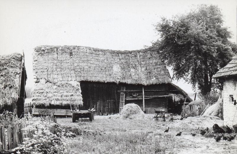 Stodoła w jednej z zagród w Krzepinie [1972 r.]. Ap.