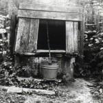 Studnia w jednej z krzepińskich zagród [1972 r.]. Ap.