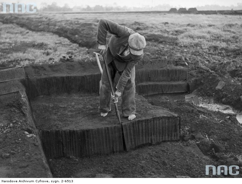 Wycinanie torfu... [1943 r.]. Narodowe Archiwum Cyfrowe.