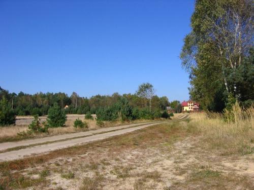 Kurwinów - część Krzepina [2010 r.]. Foto W. Cichecki.