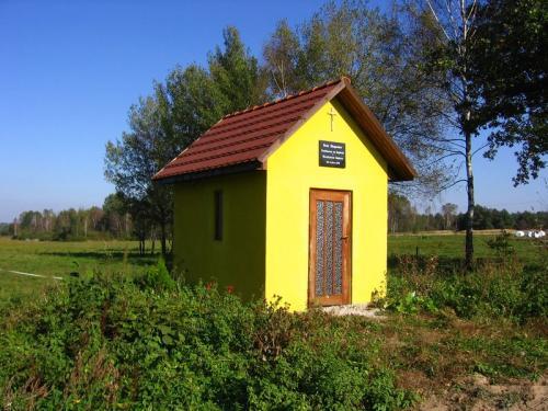 Odrestaurowana w 2008 roku kapliczka [2010 r.]. Foto W. Cichecki.