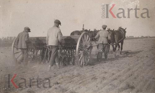 Siew zboża siewnikiem konnym [1932 r.]. Ze zbiorów Ośrodka KARTA.